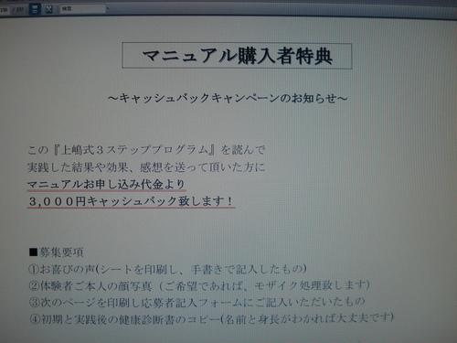 キャッシュバック①.JPG