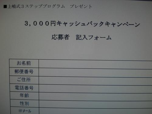 キャッシュバック③.JPG