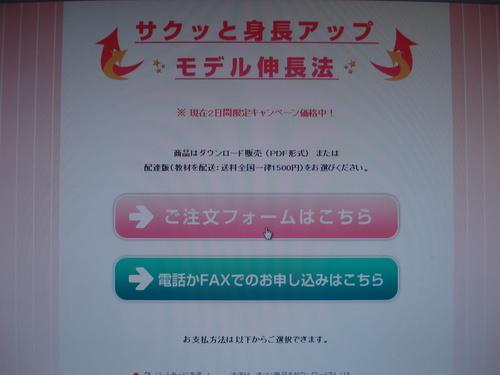 モデル注文②.JPG