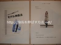 モデル トップ画.JPG